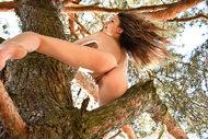 http://img30.imagedunk.com/i/03584/z1jrc9ldsa9f_t.jpg