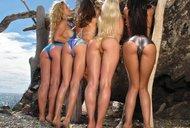 http://img30.imagedunk.com/i/03622/61w3v4q4ko2k_t.jpg